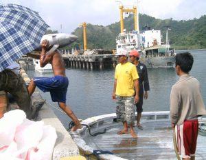 Salah satu kegiatan di Pelabuhan Labuan Uki