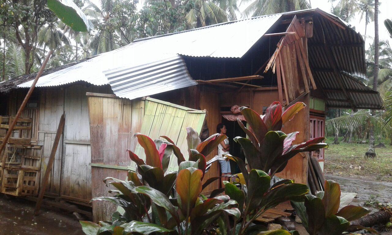 Pohon Tumbang Hantam Pemukiman Warga Berita Bolmong Berita Daerah
