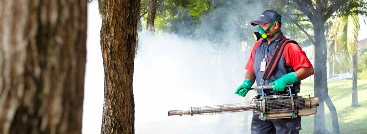 Pasien DBD di Kotamobagu Terus Bertambah, Erna: Fogging Tidak Membunuh Jentik Nyamuk Berita Kotamobagu
