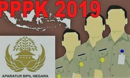 17 Pendaftar PPPK Guru di Bolmong, Hanya 8 Orang Lulus Passing Grade Berita Bolmong