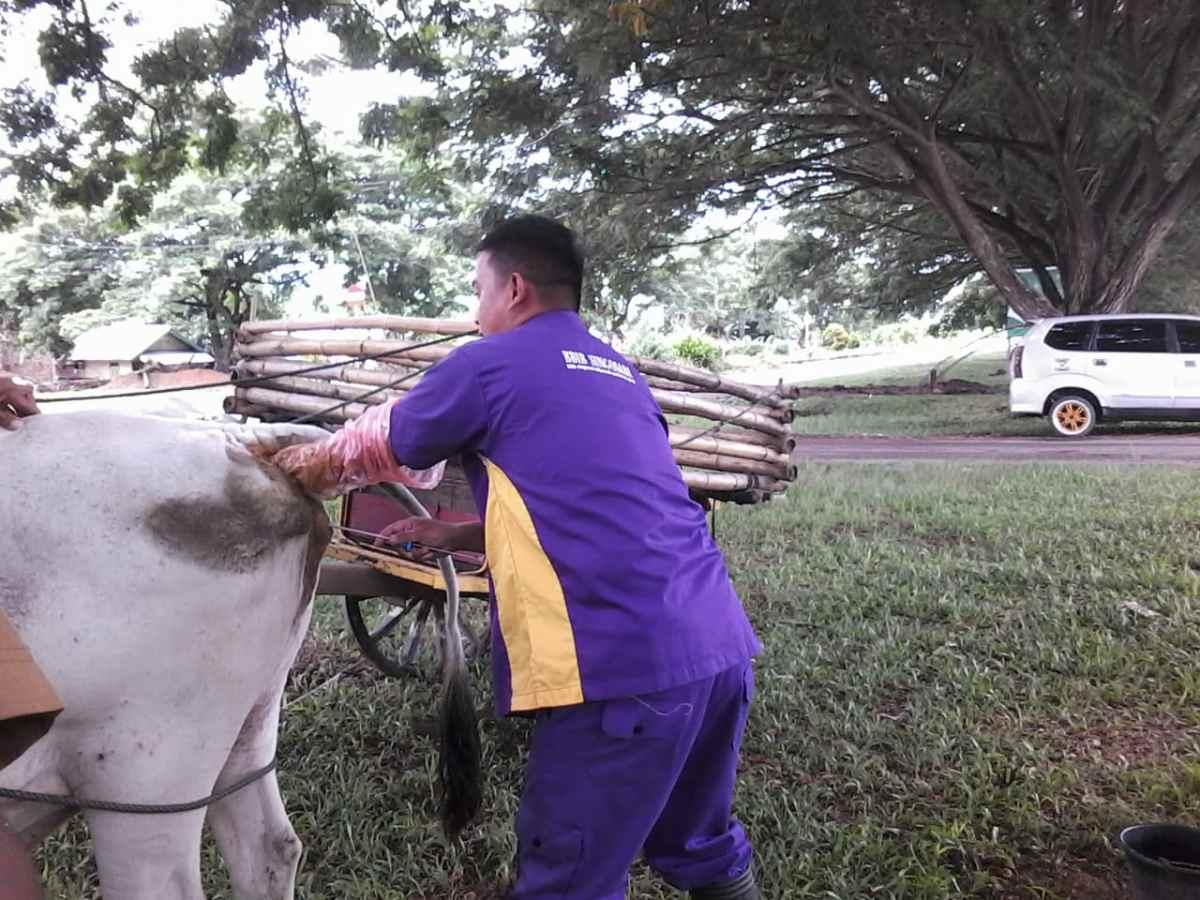 Program SIWAB di Boltim Masih Kekurangan Petugas Lapangan Berita Boltim Berita Nasional Sulut