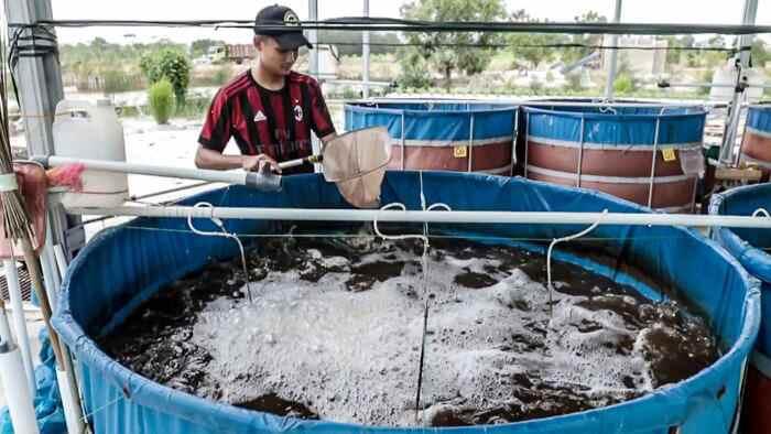 Tabang Kembangkan Budidaya Ikan dengan Teknologi Bioflok Berita Kotamobagu