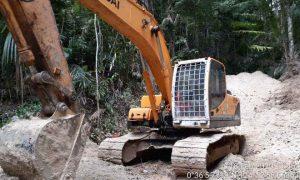 Kasus Tambang Emas Ilegal di Kawasan TNBNW, Ancaman Pidana Diatas 10 Tahun, Dua Terdakwa tak Ajukan Eksepsi Berita Bolmong Berita Hukum Sulut