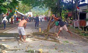 Camat Passi Barat Imbau Warga Waspadai Pohon Tumbang Berita Bolmong