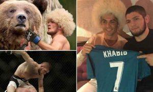 Khabib Numagomedov Banyak Belajar dari Ronaldo Berita Olahraga