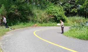 Polisi Ungkap Kronologi Lakalantas yang Tewaskan Sekdes Tungoi dan Istri di Jalur Tonsile
